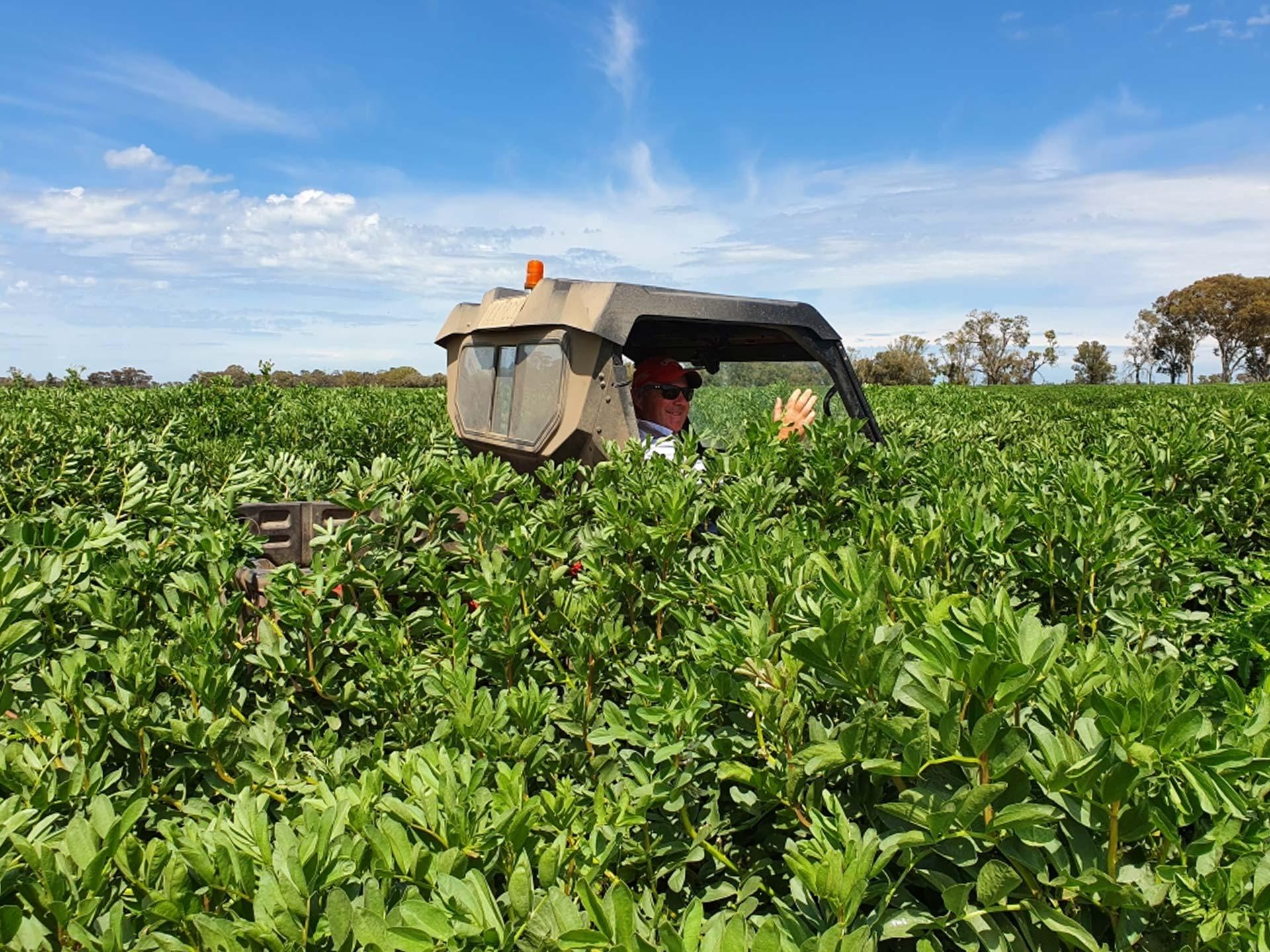 Grain Production, Hawkins Booroopki Farms